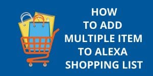 How To Add Multiple Item To Alexa Shopping List